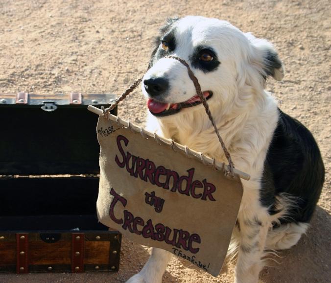 """koira pienen aarrearkun kanssa kantaa kylttiä """"surrender thy treasure, thank you!"""""""